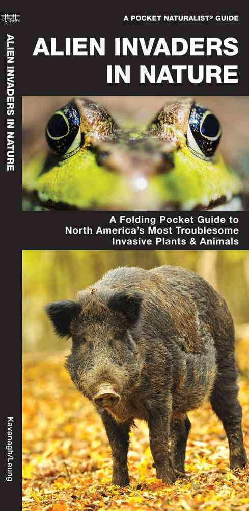 Alien Invaders in Nature By Kavanagh, James/ Leung, Raymond (ILT)